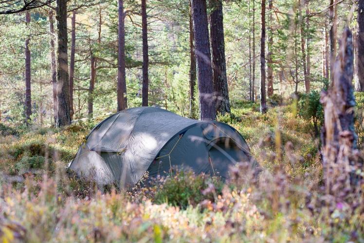 Praktisk å telte ti meter fra bil og innenfor hundre meter av all klatringen i området.
