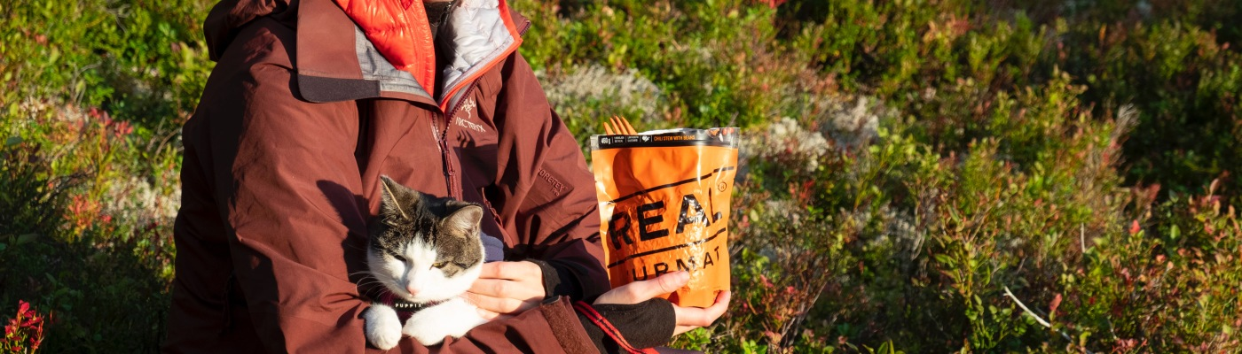 How to hike and camp with a cat
